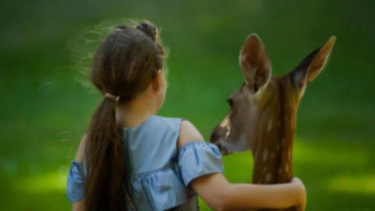 Οι Μορφές Σχέσεων που Αναπτύσσονται ανάμεσα στους Ανθρώπους & τα Ζώα μέσα από τη Λογοτεχνία, την Ιστορία & την Τέχνη